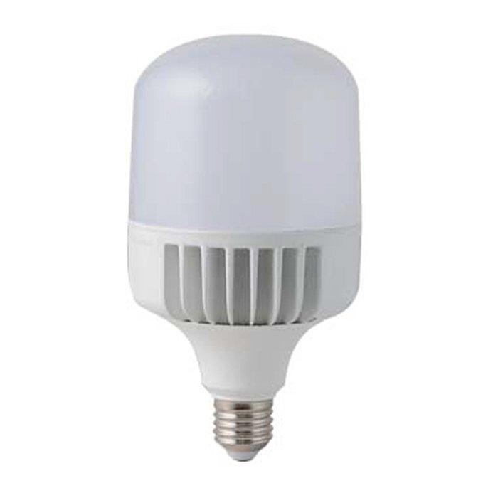Đèn LED Bulb Trụ 40W TR100/40W Rạng Đông